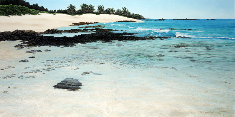 Brian Marshall White - Beach At Waikaloa World Class Artist