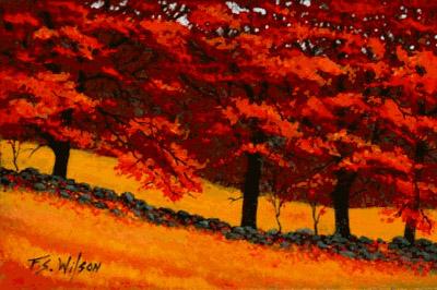 Frank Wilson - Autumn Blaze World Class Artist