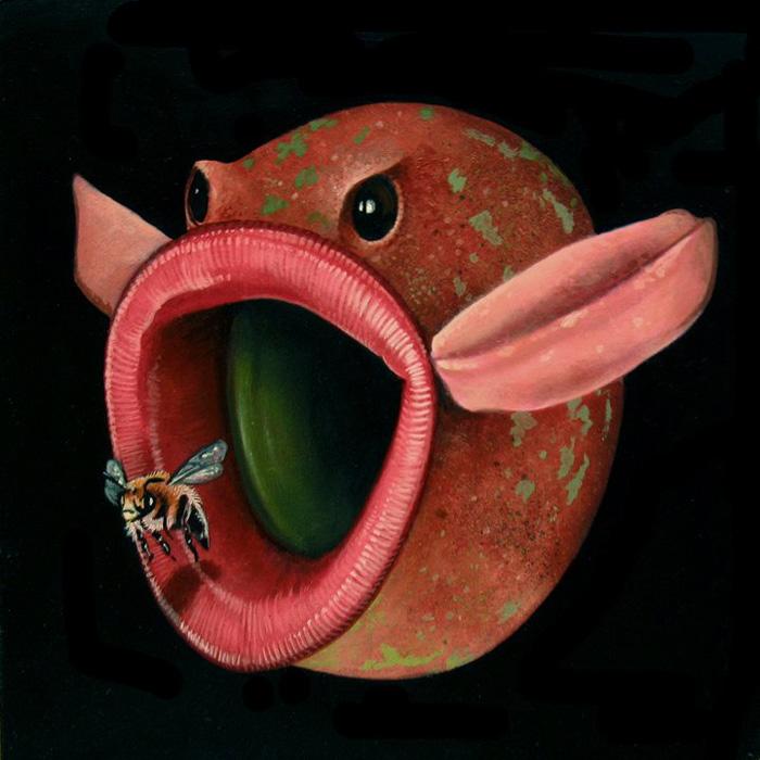 Scott Scheidly - Humpback Moth World Class Artist